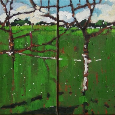 B002 - Jabłonie - olej - 30 x 60 | Apple Trees