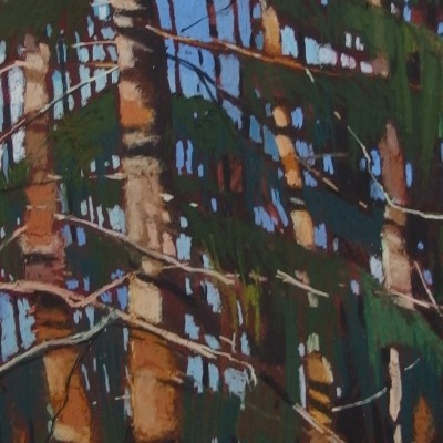 B009 - Sosny - pastel - 58 x 70 | Pinewood