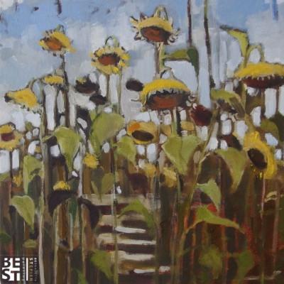 B020 - Słoneczniki - olej - 30 x 30 | Sunflowers